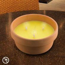 Candela alla Citronella nel Vaso di Terracotta 15 cm